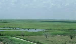 Texas Coastal Plains