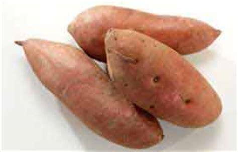 la patate douce une manne d antioxydants et une aide dans