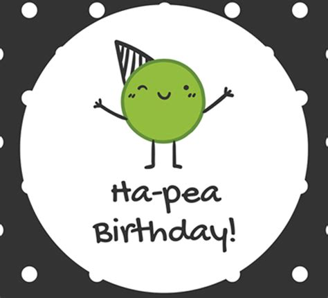 funny birthday wishes    send