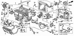 Wiring Diagram For 2006 Honda Accord Vax 41478 Enotecaombrerosse It