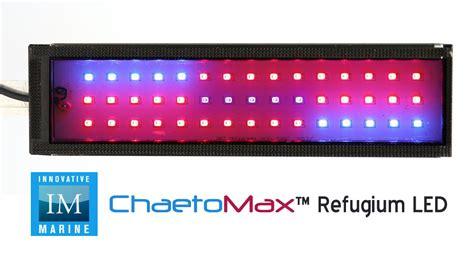 refugium led grow lights innovative marine 39 s chaetomax refugium led advanced