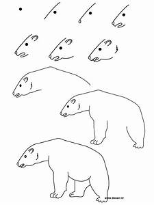 Drawing polar bear