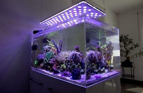 Illuminazione Led Per Acquario Led Acquario Marino Led Acquario A Led Per Acquario