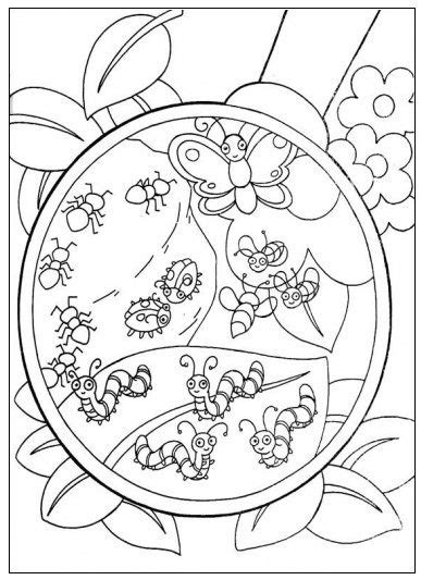 Kriebelbeestjes Kleurplaat by Kleurplaat Insecten Lente Peuter Thema Insecten En