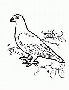 Bird Coloring Pages For Preschoolers