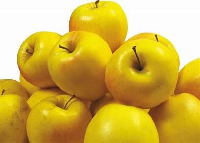 Apple Yellow Apples Pngimg