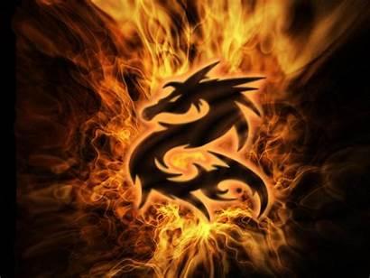 Dragon Wallpapers Backgrounds Dragons Cool Desktop Fire