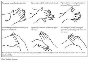 Hand Washing Lesson