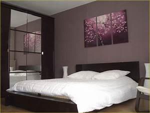 Peinture Mur Chambre : couleur mur chambre adulte avec decoration mur chambre ~ Voncanada.com Idées de Décoration