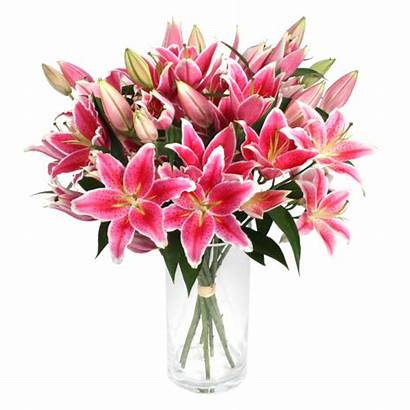Lilies Flowers Lily Language Meaning Serenataflowers Delivered