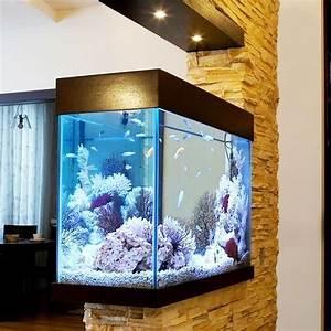 Un Aquarium Pour Une Touche Nature Dans La Maison
