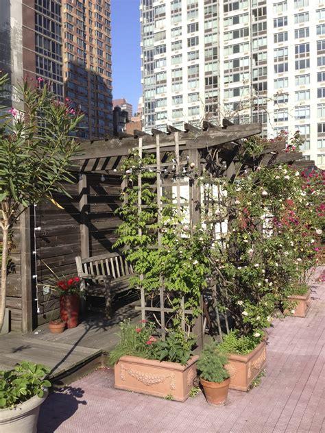 urban gardening  ultimate guide  city gardening