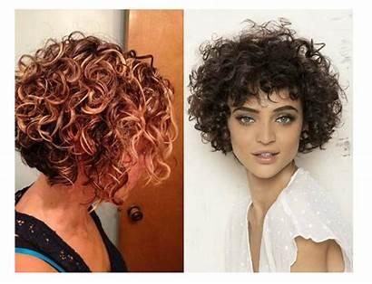 Curly Bob Short Hairstyles Haircuts Hair Cut