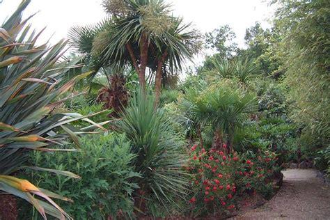 hardy mediterranean plants garden design portfolio of paramount plants gardens