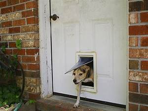 Pet door wikipedia for Dog doors that keep other animals out