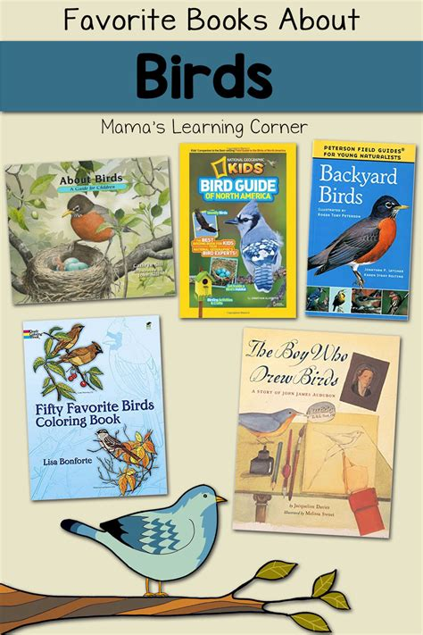 favorite books  learn  birds mamas learning corner