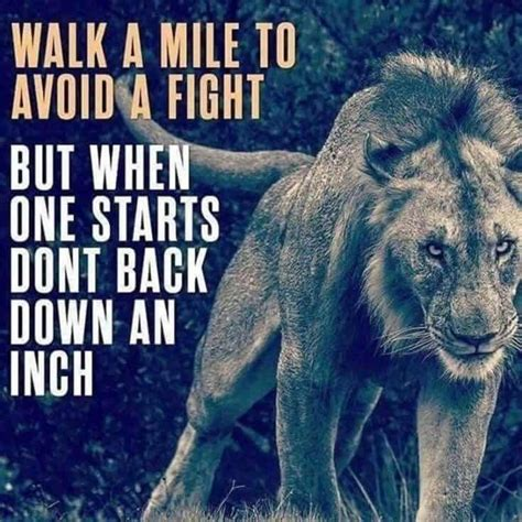 38 Warrior Quotes That Will Inspire You (Absolute) – TailPic