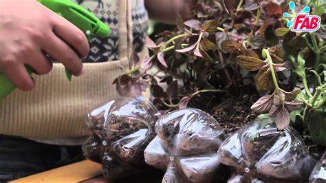 Cómo Hacer Un Jardín Colgante Con Objetos Reciclados