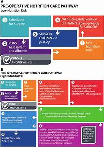 Example Of Preoperative Nutritional Care Pathways  A