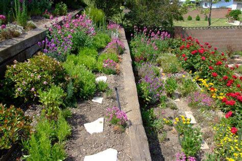 tiered garden tiered flower gardens on pinterest evergreen shrubs raised garden beds and buxus