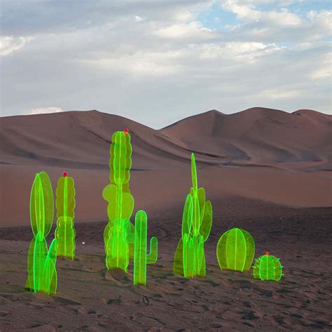 nobel truongs acrylic plants design crush