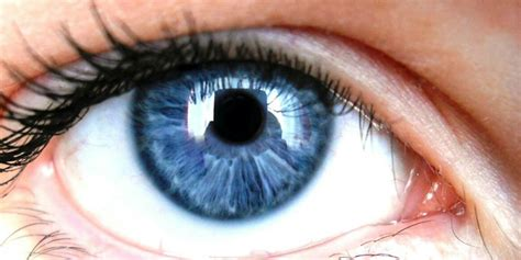 Blue Eyed by With Blue More Likely To Be Alcoholics Askmen