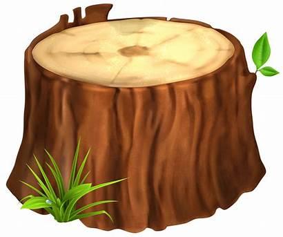 Stump Tree Trunk Clipart Clip Wood Transparent