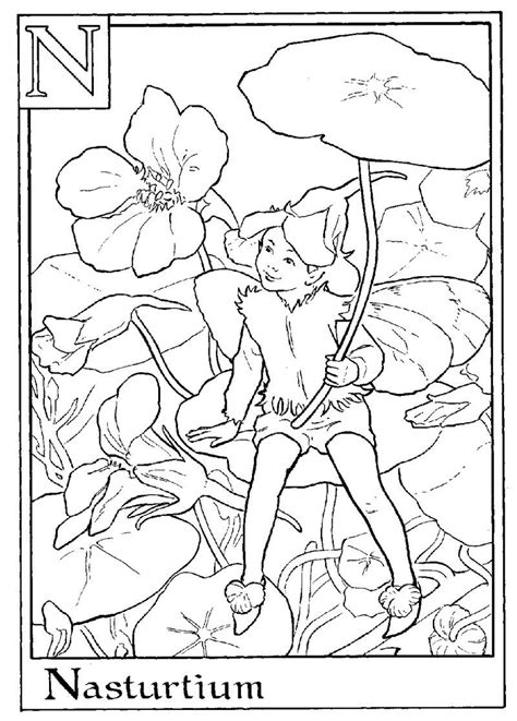 Alphabet Fairy Nasturtium Coloring Page See the category