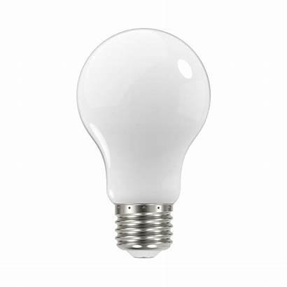 Bulbs Lighting Standard Bulb Depot Cfl Lamp