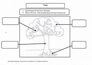 Key Stage 2 Geography  Climate Zones And Vegetation Unit Of Work By Helenmacdonald81