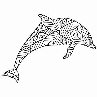 Dolphin Coloring Pages Animal Geometric Whale Printable