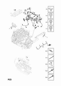 Engine Wiring Harness  Z20dmh Llw  Diesel Engine  Opel Antara