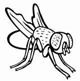 Fly Coloring Pages Disgusting Flies Colouring Guy Firefly Drawing Insect Hi Printable Clipartmag Sky Trending Days Last Getcolorings Results Most sketch template