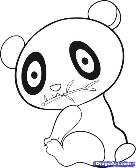 draw  easy panda step  step rainforest