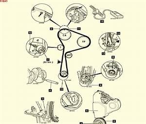 Renault Trafic 1 9 Dci Engine Diagram  Renault  Wiring