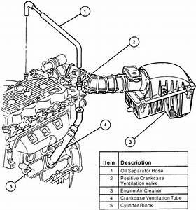 1998 Ford Escort Pcv Hose
