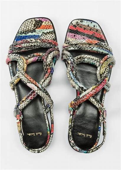 Sandals Carlin Snake Smith Paul Swirl Leather