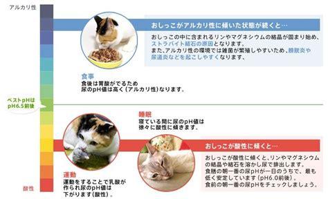 ロイヤル カナン ph コントロール 違い