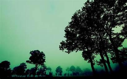 Dark Desktop Backgrounds Forest Misty Creepy Wallpapers