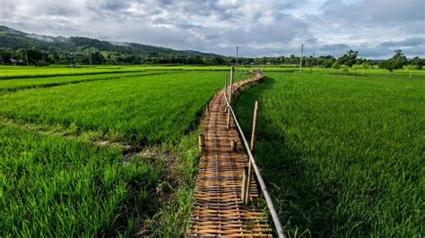ยกระดับท่องเที่ยวเชิงเกษตร 50 วิสาหกิจชุมชน 55 เมืองรอง