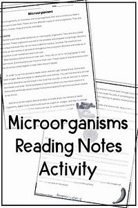 Reading Worksheets  Short Reading Passages For 4th Grade