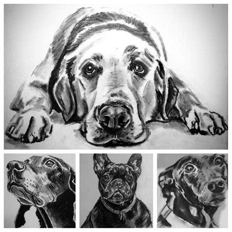 animals drawings izzyfrancesharvey