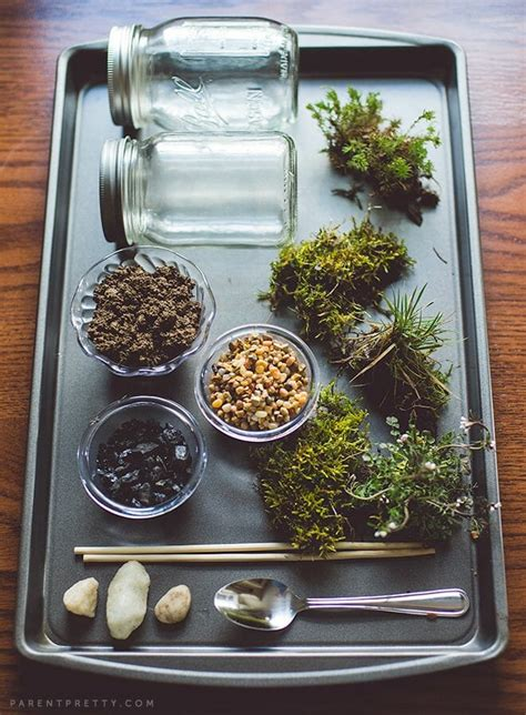 what you need for a terrarium how to make a terrarium a step by step diy tutorial