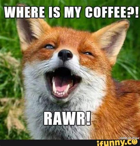Fox Memes - cute fox meme images reverse search