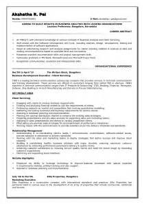 business analyst resume sle template design
