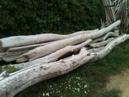 Tronc Bois Flotté : bois en troncs entreprises ~ Dallasstarsshop.com Idées de Décoration