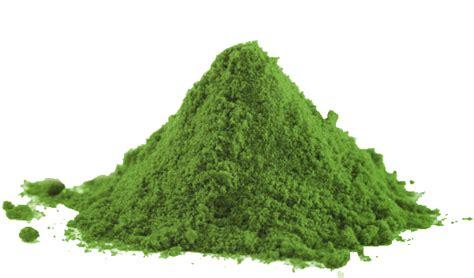 greens in powder form scrumptious recipes using spirulina susan smith jones phd