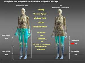 Body Water Mass