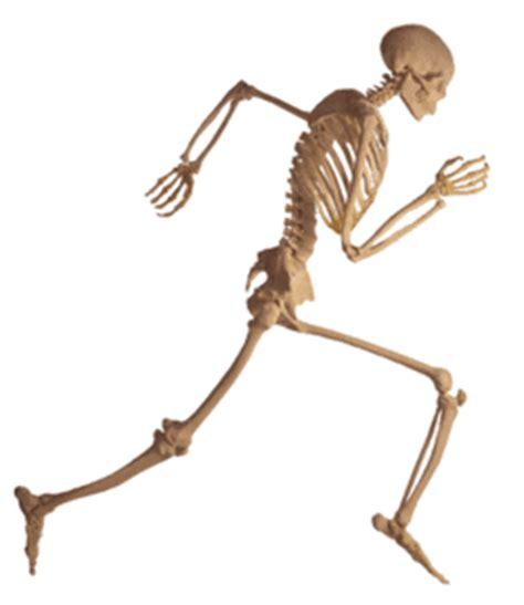 11 jenis penyakit yang menyerang tulang