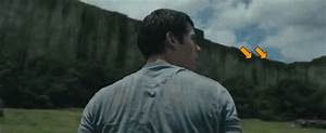 These GIFS Prove 'The Maze Runner' Kids Deserve Their Fate
